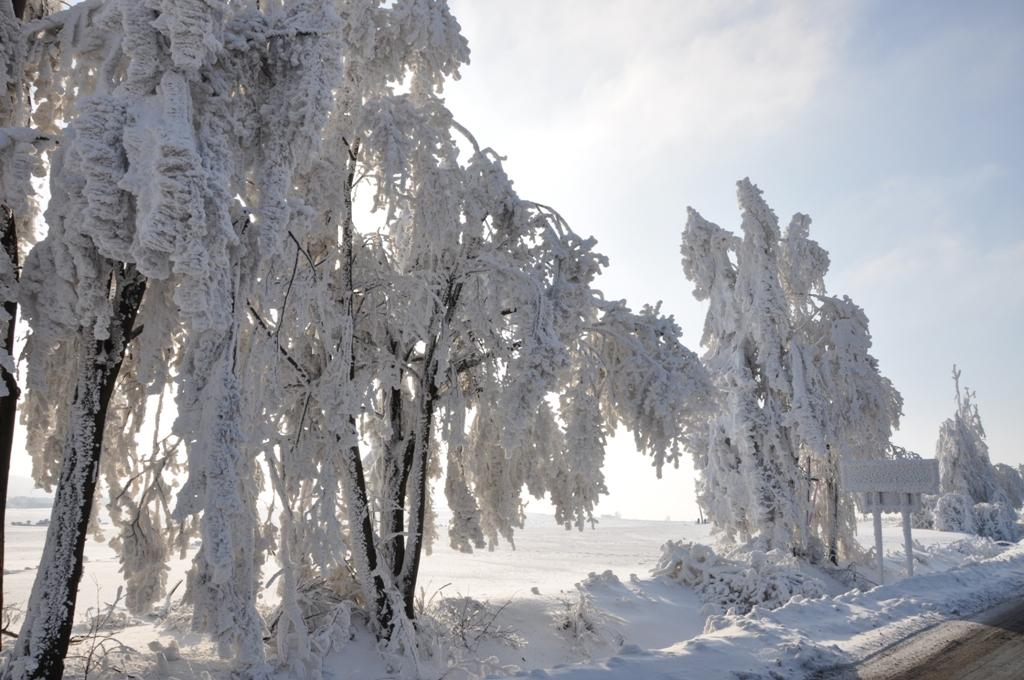 fot. M.Golanko_ Pejzaż zimowy_Skała