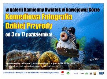 """Komediowa Fotografia Dzikiej Przyrody @ Galeria sztuki """"Kamienny Kwiatek"""""""